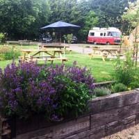 M4 Jct 18 dog walk and dog-friendly organic food, Wiltshire - Wiltshire dog friendly pub and dog walk