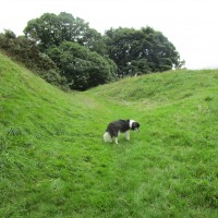 M6 Junction 37 dog walks and refreshments in Sedbergh, Cumbria - Dog walks in Cumbria