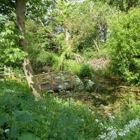 Enjoyable Skellingthorpe dog walk, Lincolnshire - Dog walks in Lincolnshire