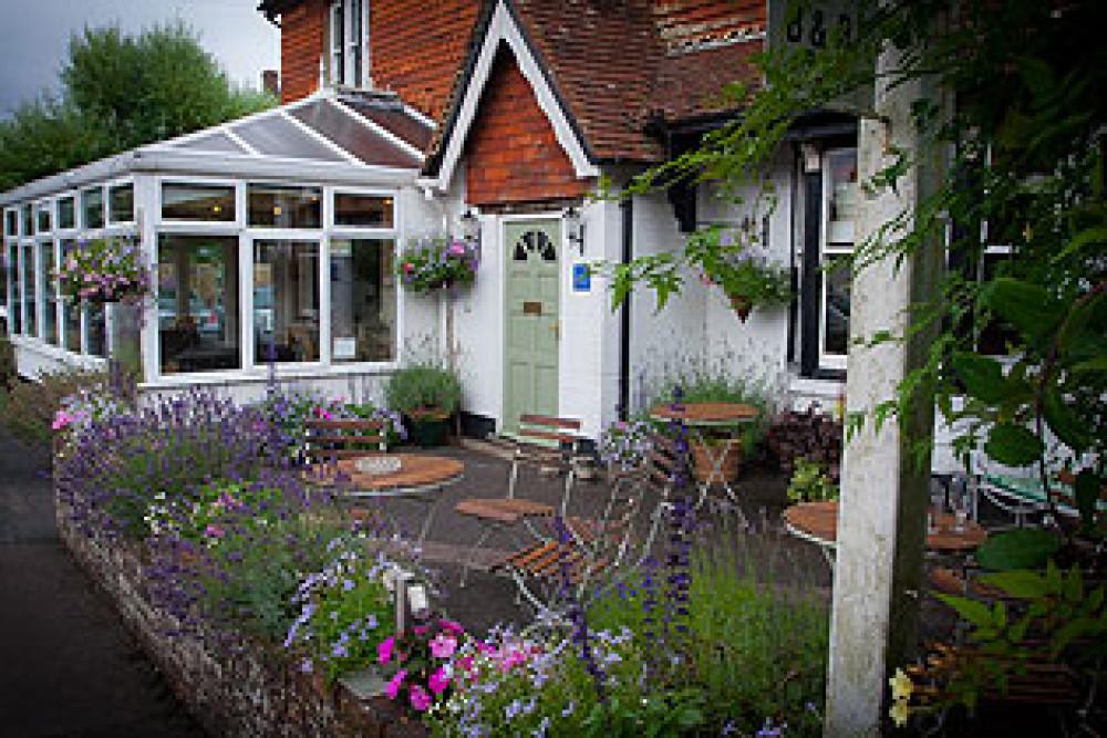 A24 dog walk and dog-friendly eating pub, West Sussex - Sussex dog-friendly pub and dog walk