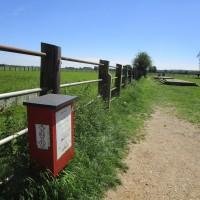 A34 nr Oxford dog walk and dog-friendly pub, Oxfordshire - dog walk in Oxfordshire