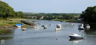 A39 dog-friendly pub and easy dog walk, Devon - Driving with Dogs