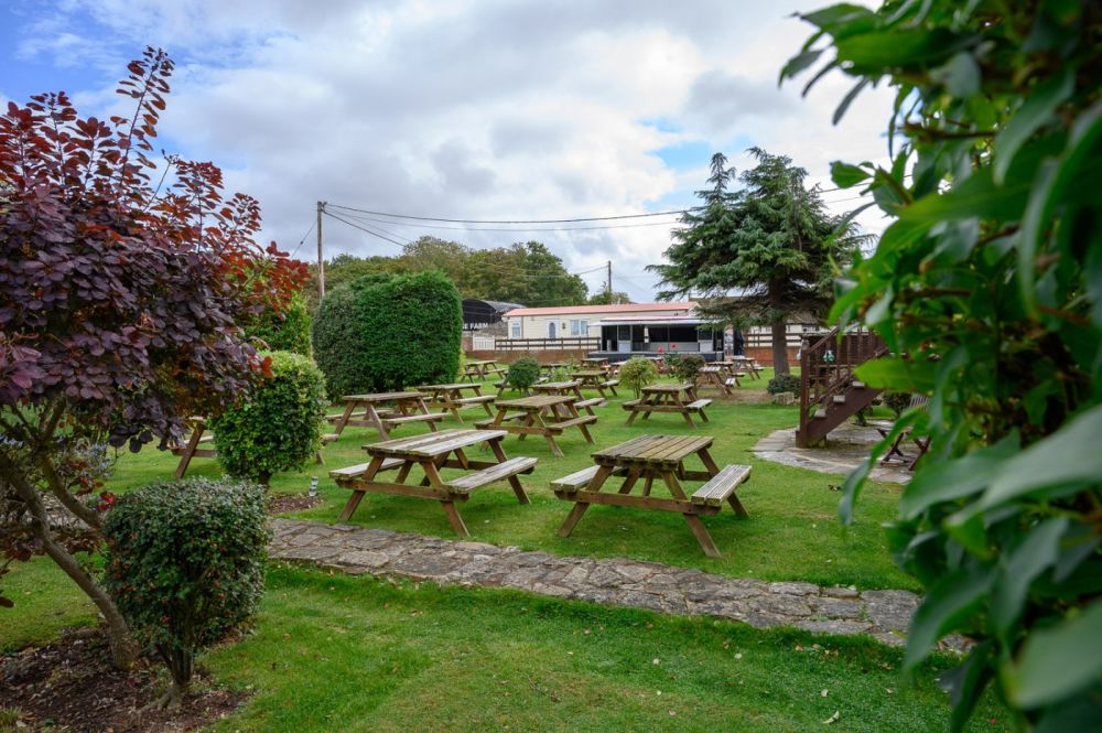 Dog-friendly inn with dog-friendly beach and long walks, Somerset - dog-friendly inn with rooms in Somerset.jpg