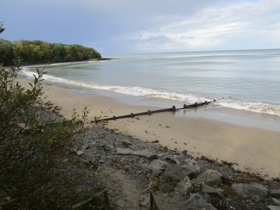 Cei Bach dog-friendly beach and walk, Wales - Driving with Dogs