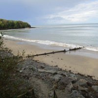 Dog-friendly beach and walk near Newquay, Wales - IMG_5927.JPG