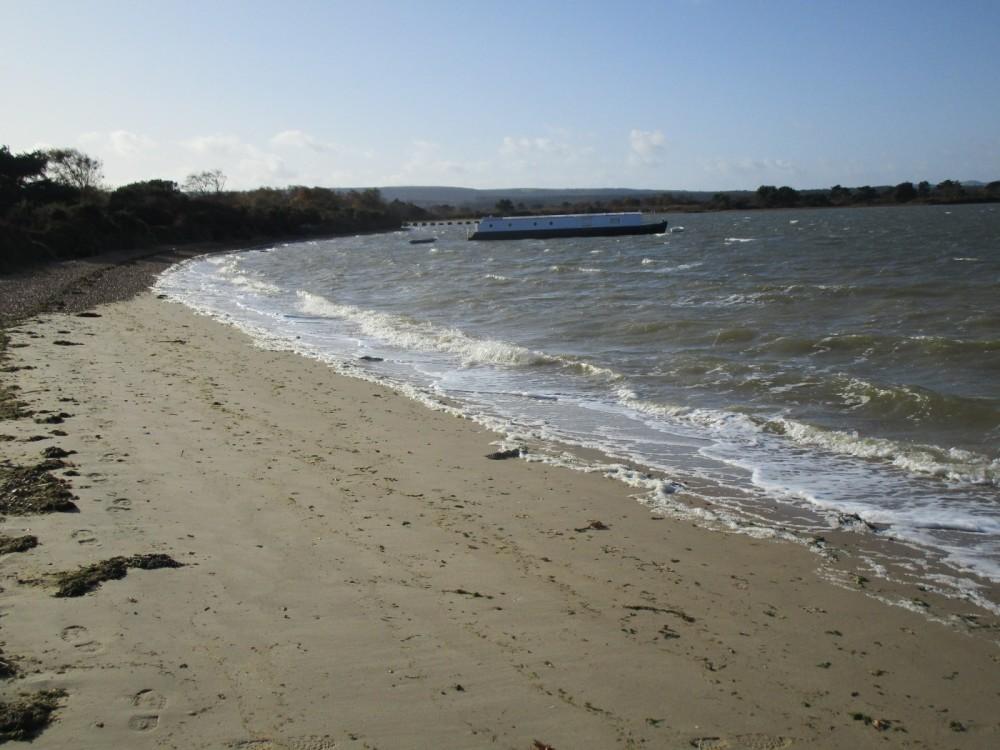 Bramblebush dog-friendly beach, Dorset - IMG_6426.JPG