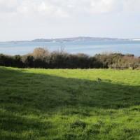 Coast path dog walk with pub, Dorset - IMG_6565.JPG