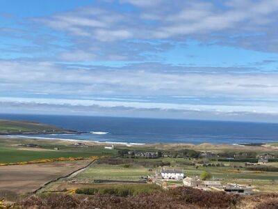 Borlum Circuit - a wonderful walk with the dog, Scotland - Driving with Dogs