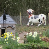 M23 Junction 9 dog-friendly pub and dog walk, Surrey - Surrey dog-friendly pub and dog walk.JPG