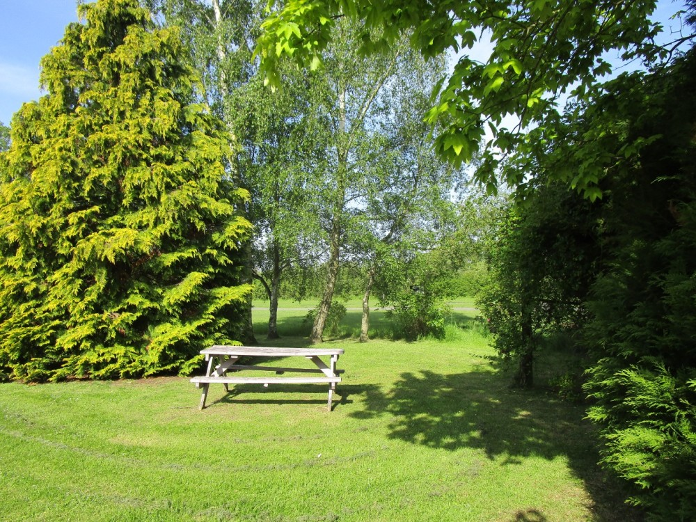 Dog-friendly pub with camping near Tewkesbury, Worcestershire - Worcestershire dog walks and dog-friendly pubs.JPG