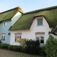 A31 dog-friendly pub near Winterbourne, Dorset - IMG_0127.JPG