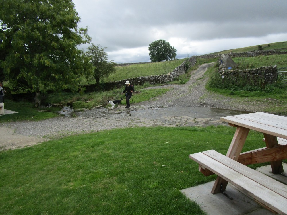 Doggiestop for a picnic and walkies, Yorkshire - Dog walks in Yorkshire