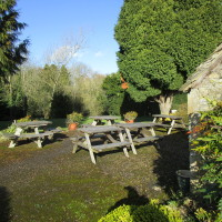 Broadwell dog-friendly pub and dog walk, Gloucestershire - Dog walks in Gloucestershire