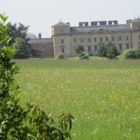 A38 Croome Park dog walks, Worcestershire - Worcestershire dog walks and dog-friendly pubs.JPG