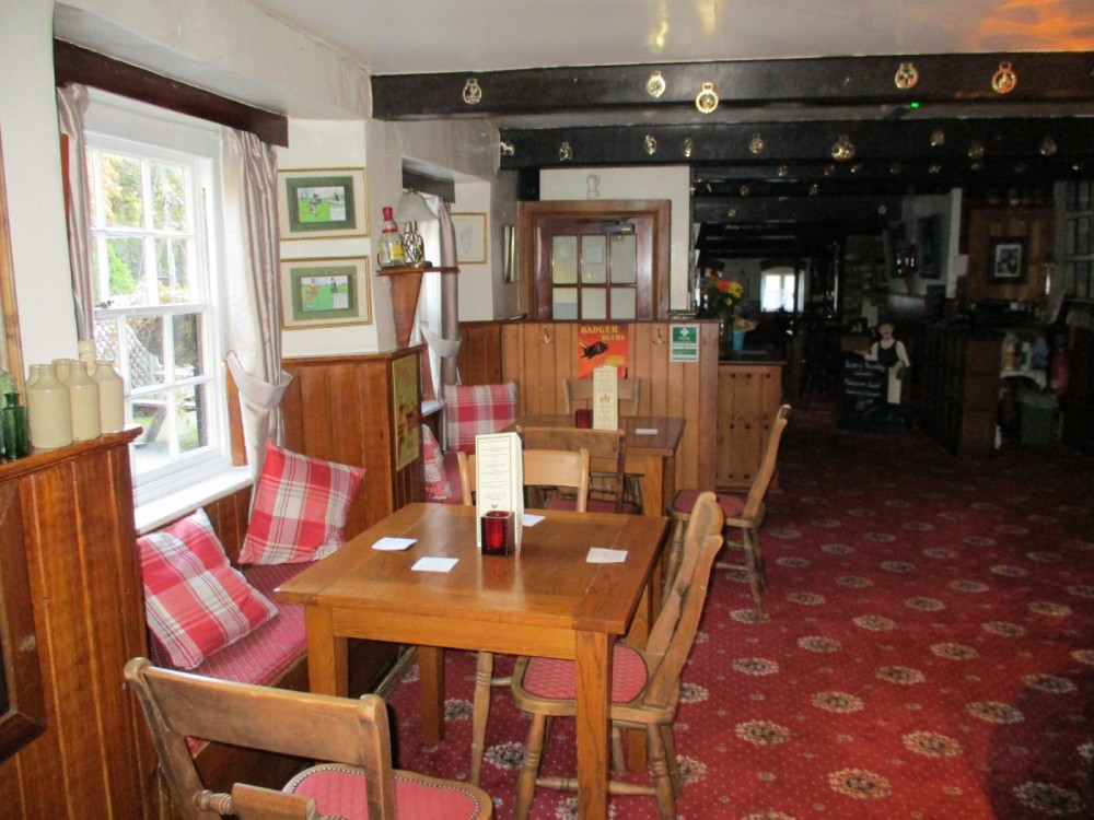 A351 Forest walk and dog-friendly pub, Dorset - IMG_0273.JPG