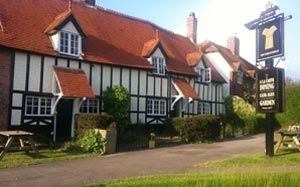 Dog-friendly pub and dog walk near Wantage, Oxfordshire - Driving with Dogs