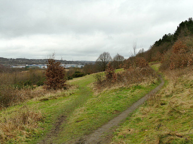 A62 Dalton Bank local dog walk, West Yorkshire - huddersfield dog walks .jpg