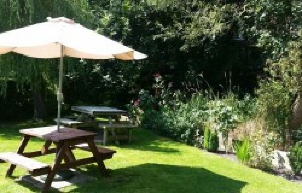 Dog-friendly pub and a dog walk near Chichester, West Sussex - Sussex dog-friendly pub and dog walk.jpg
