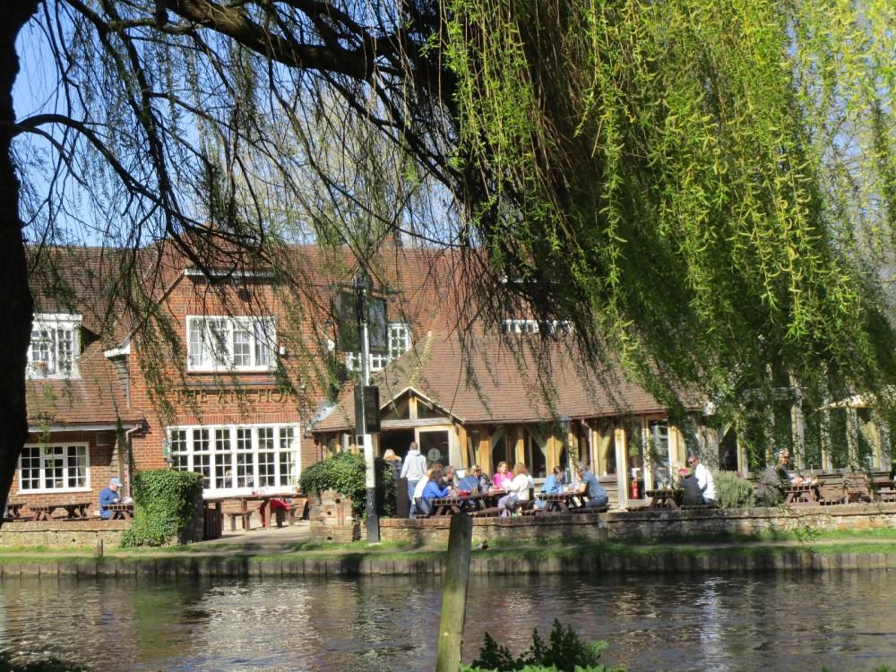 A3 dog-friendly dining pub and dog walk, Surrey - Surrey dog-friendly pub with dog walk.JPG