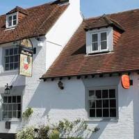 A32 riverside dog walk and dog-friendly pub, Hampshire - Hampshire dog-friendly pub and dog walk
