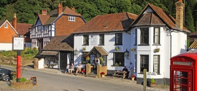 Coldharbour dog walks and dog-friendly pub, Surrey - Driving with Dogs
