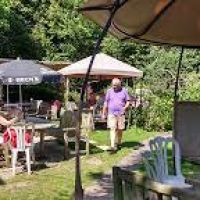A3 dog-friendly village pub and dog walk near Petersfield, Hampshire - Hampshire dog friendly pub and dog walk