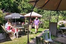 A3 dog-friendly village pub and dog walk near Petersfield, Hampshire - Driving with Dogs