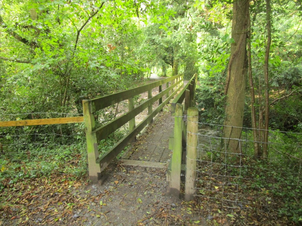 A487 dog walk near Aberystwyth, Ceredigion, Wales - IMG_5965.JPG