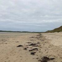 Large sandy and dog-friendly beach, Scotland - Dunnet 5.jpg