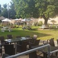 A38 dog and family-friendly inn, Somerset - Somerset dog-friendly pubs and dog walks.jpg