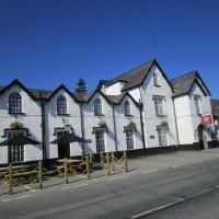 A44 dog-friendly hotel and dog walk, Wales - Dog walks from dog-friendly pubs in Wales.JPG