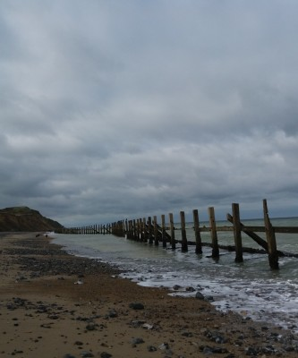 East Runton dog-friendly beach, Norfolk - Driving with Dogs