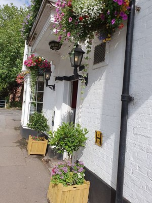 M4 dog friendly pub and dog walk, Berkshire - Driving with Dogs