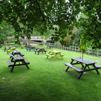 Curbar dog-friendly pub and dog walk, Derbyshire - Dog walks in Derbyshire