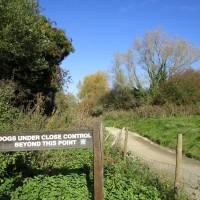 Lakeside dog walk near the M20, Kent - Kent dog-friendly pubs with dog walks