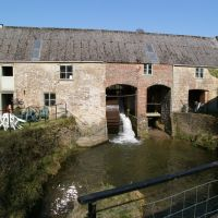 A35 country dog walk and village pub with garden, Dorset - Dog walk to a working mill Dorset.jpg
