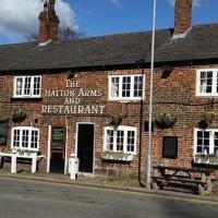 Dog-friendly pub near Stretton, Cheshire - Hatton-Arms dog-friendly Cheshire.jpg