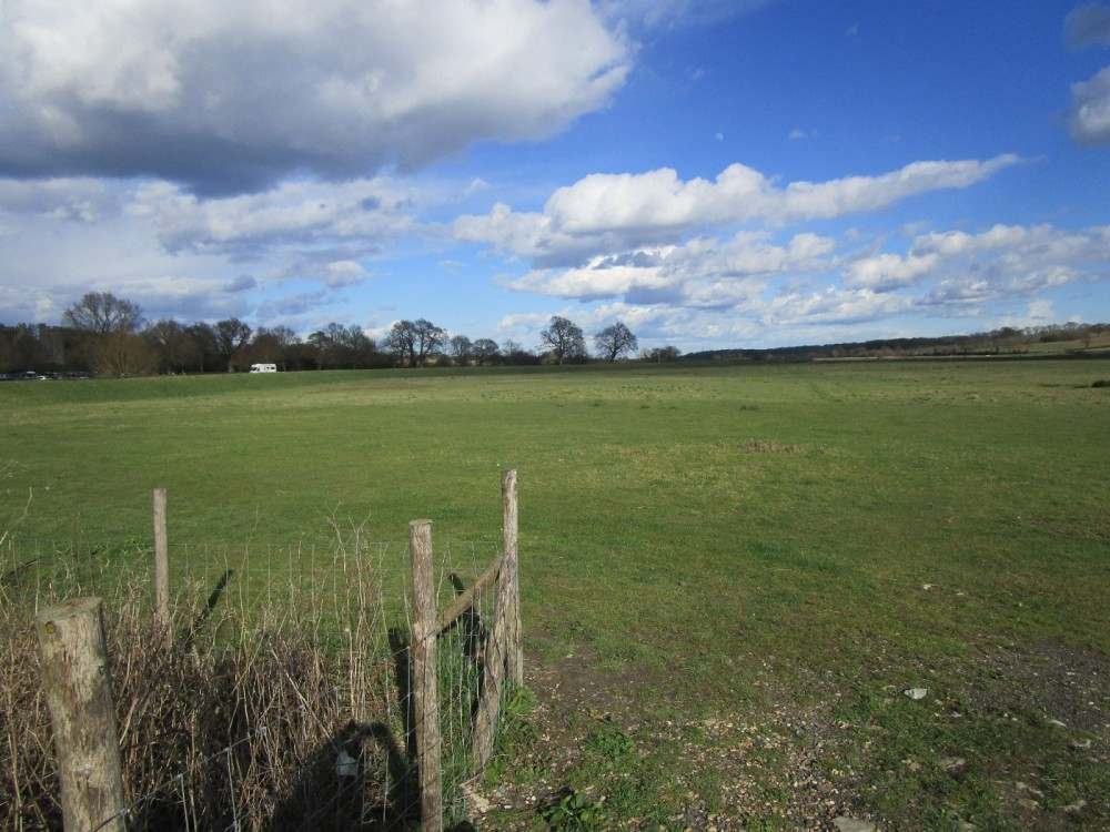 A21 dog walk and dog-friendly pub, East Sussex - Kent dog-friendly pubs and dog walks.JPG