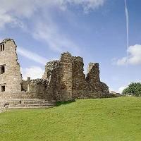 A66 dog walk in the Pennines, Cumbria - Dog walks in Cumbria
