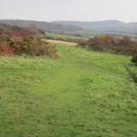 A35 coast path dog walk with views, Dorset - IMG_6737.JPG