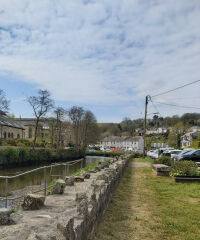 Lostwithiel Riverside Dog Walk, Cornwall - 20210427_110644.jpg