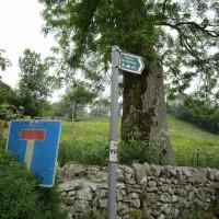 River Dove dog-friendly pub and dog walk, Derbyshire - Peak District dog-friendly pub and dog walk