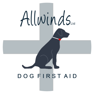 Allwinds Dog First Aid Ltd, Somerset - Driving with Dogs