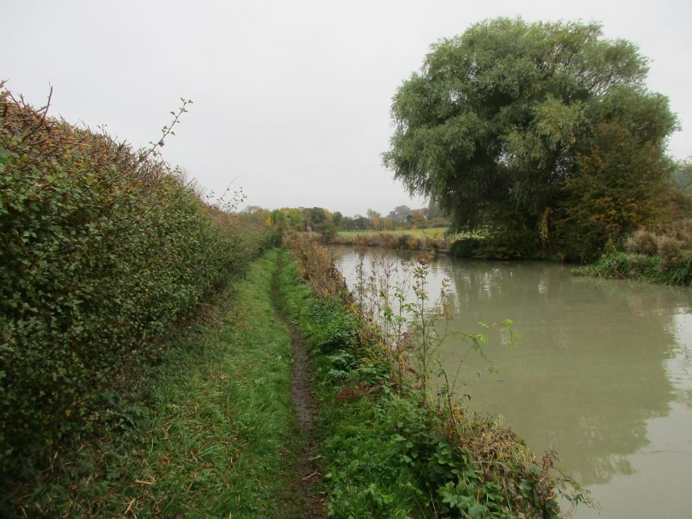 A425 dog-friendly pub and dog walk, Warwickshire - Napton dog walk in Warwickshire