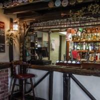A259 Woodland dog walk and dog-friendly pub, East Sussex - Sussex dog walks with dog-friendly pub.jpg