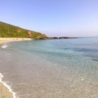 Dog-friendly beach and dog walk near Mevagissey, Cornwall