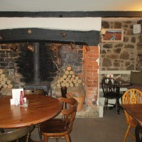 A3066 dog-friendly dining and dog walk, Dorset - IMG_0574.JPG