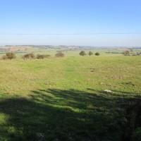 A259 dog walk and dog-friendly pub near Winchelsea, East Sussex - Dog walks in Sussex