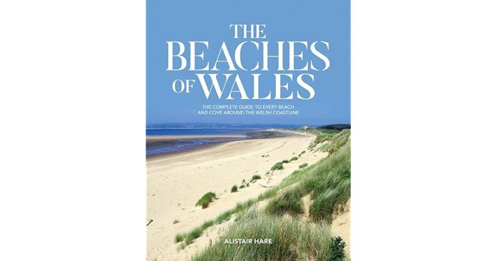 dog-friendly beaches of wales.jpg