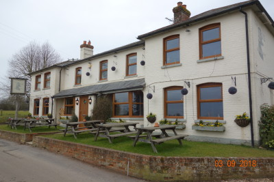 Downs dog-friendly pub and dog walk, Berkshire - Driving with Dogs